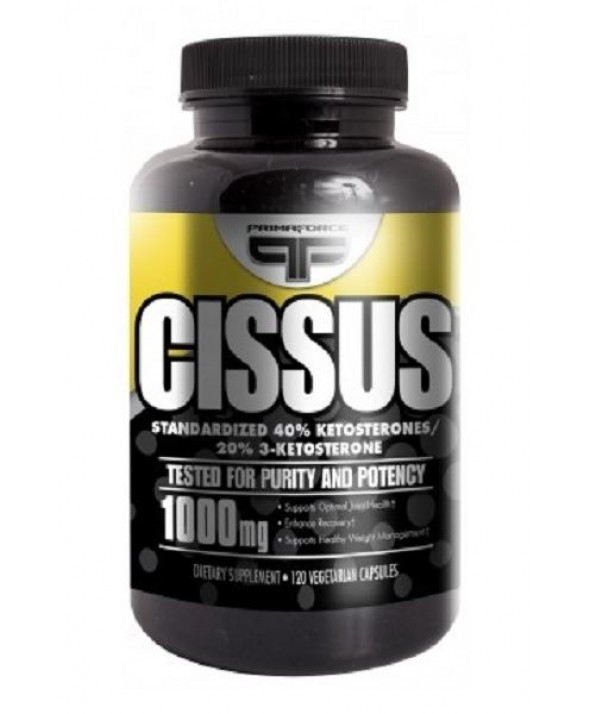 Cissus by Primaforce
